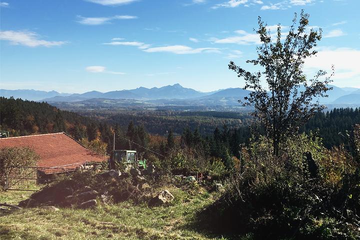 Taubenberg. Bergfotos im Oktober. ZENtreasures.de