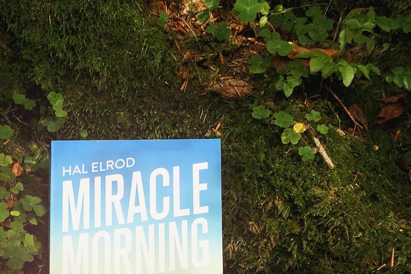 Miracle Morning - So stehst du auch in der Winterzeit gerne auf! #ZenMorning