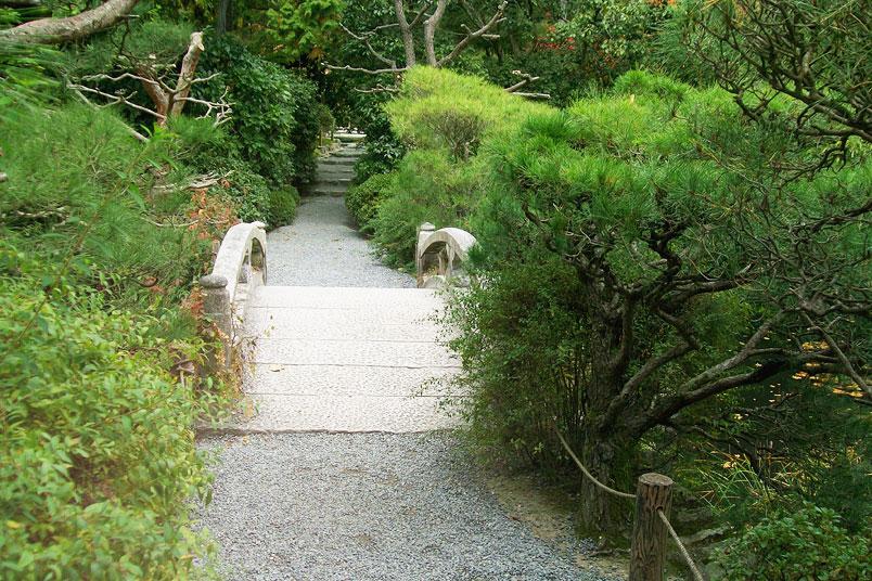 Wie du Stille für dich nutzt. Japanischer Zen Garten Ryoanji in Kyoto